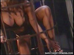 Hot Pornbabe Foot Sex