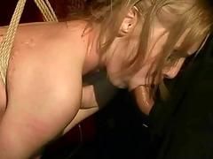 Tempting chick gets in submission to suck a hard prick