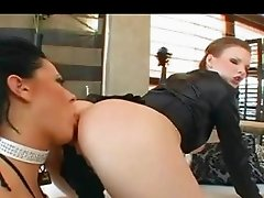 Extreme ass acrobats and colon licking